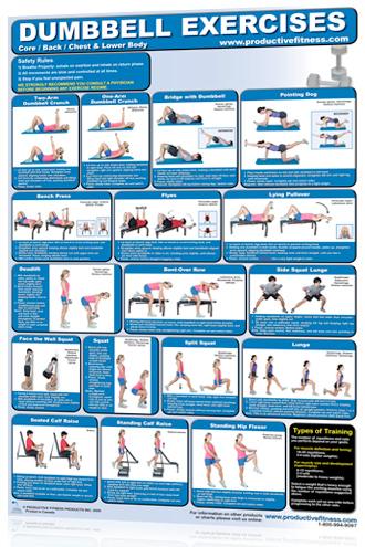 Dumbbell Workout At Home Chest Training Programs