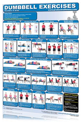 poster db exercises shoulder/arms  rocky mountain fitness
